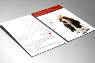 Mailing Tierarztpraxis Ober St. Veit